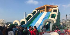 aia carnival inflatable ice slide attraction